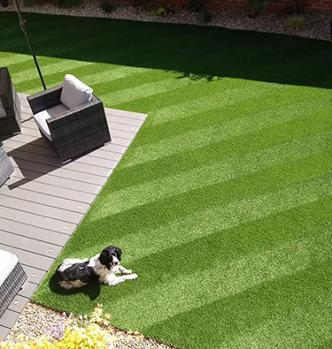 Perfectly striped back lawn